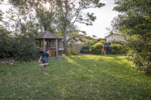 Backyardcricket