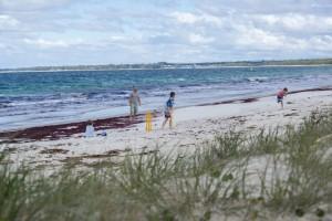 BeachCricket2