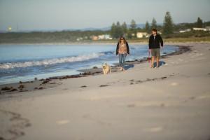 Dogwalkbeach4