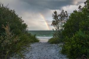 Rainbowcallalabeach-final